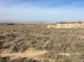 Plot of land 4000 m2, Freila